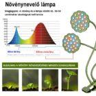 Növény nevelő LED lámpa 20W 2 fejű, hajlítható, csíptethető DC 5V