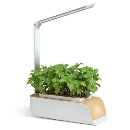 Hidroponikus növénynevelő készülék, széles spektrumú növénynevelő LED lámpa