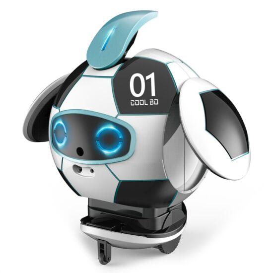Intelligens, labda formájú, akadálykerülő és beszédfelismerő robot